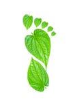 Зеленая концепция печати ноги углерода Стоковые Изображения RF