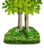 Зеленая концепция следа ноги углерода Стоковые Изображения RF