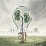 Зеленая концепция энергии Стоковые Изображения RF