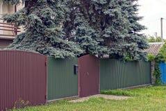 Зеленая коричневая загородка сделанная из металла и большая ель в дворе Стоковая Фотография