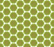 Зеленая коричневая флористическая картина ткани Стоковая Фотография RF