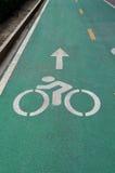 Зеленая майна велосипеда на дороге асфальта Стоковое фото RF