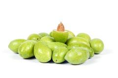 Зеленая молодая оливка Стоковое фото RF