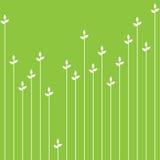 Зеленая органическая безшовная картина Стоковое Фото