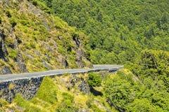 зеленая дорога стоковые изображения rf