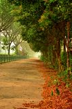 Зеленая дорожка рядом с скоростной дорогой Стоковые Фото