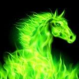 Зеленая лошадь огня. Стоковое фото RF