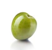 Зеленая оливка Стоковые Изображения