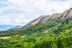 Зеленая долина в Хорватии Стоковая Фотография RF