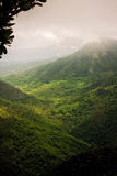 Зеленая долина с холмами в Маврикии Стоковые Изображения RF