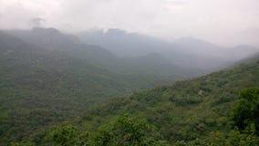 зеленая долина Стоковое Изображение RF