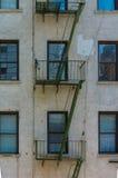 Зеленая пожарная лестница Стоковое Фото