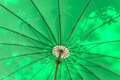 Зеленая предпосылка зонтика Стоковые Фото