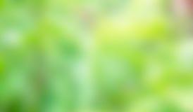 Зеленая предпосылка нерезкости Стоковая Фотография RF