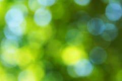 Зеленая предпосылка нерезкости Стоковые Изображения