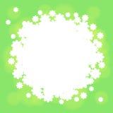 Зеленая предпосылка с белыми цветками Стоковая Фотография