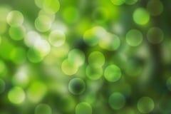 Зеленая предпосылка bokeh Стоковые Изображения