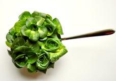 Зеленая принципиальная схема диетпитания листьев с свежим салатом цикория стоковые фото