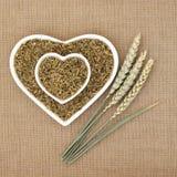 Зеленая пшеница Freekeh Стоковое фото RF
