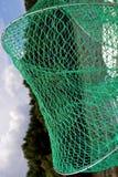 Зеленая сеть для рыб Стоковое Изображение