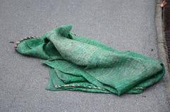Зеленая сеть shading на дороге асфальта Стоковое фото RF