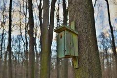 Зеленая смертная казнь через повешение дома птицы будочки птицы на дереве как символ предохранения от животный подавать и вида Стоковые Изображения RF