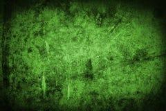зеленая стена Стоковые Изображения