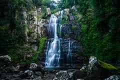 Зеленая текстура с водопадом и утесами Стоковые Изображения RF