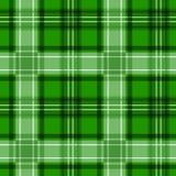 Зеленая текстура тартана. безшовная картина. Стоковая Фотография RF