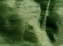зеленая текстура тканья Стоковая Фотография RF