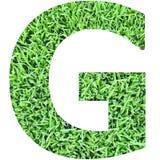 Зеленое рационализаторство стоковые фотографии rf