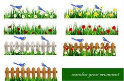 Зеленая трава безшовная Стоковая Фотография
