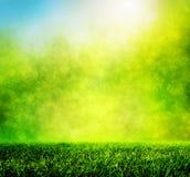 Зеленая трава весны против естественной нерезкости природы Стоковые Фотографии RF