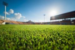 Зеленая трава в футбольном стадионе Стоковое Изображение