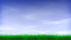 Зеленая трава & голубое небо иллюстрация вектора