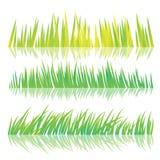 Зеленая трава, изолированная на белой предпосылке, иллюстрация вектора Стоковое Изображение