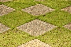 Зеленая трава и блоки Стоковое Изображение RF