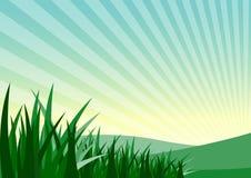 зеленая трава и гора стоковая фотография