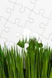 Зеленая трава и головоломка Стоковая Фотография RF