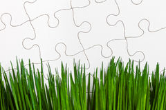 Зеленая трава и головоломка Стоковое Изображение