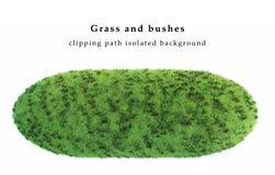 Зеленая трава и кусты Стоковые Изображения RF