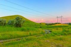 Зеленая трава и розовые облака Стоковое Фото