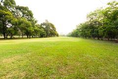 Зеленая трава, который хранят на парке Стоковые Фото