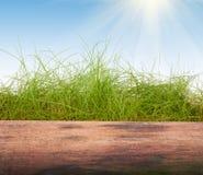 Зеленая трава на деревянной предпосылке Стоковое Изображение
