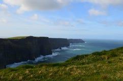 Зеленая трава на скалах моря в Ирландии Стоковые Изображения RF