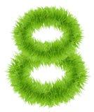 Зеленая трава 8 8 номеров изолированных на белой предпосылке Стоковая Фотография RF