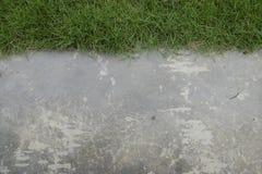 Зеленая трава с полом цемента Стоковые Изображения RF