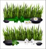 Зеленая трава с смычком Стоковые Изображения RF
