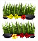 Зеленая трава с смычком Стоковая Фотография