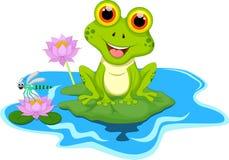 Зеленая лягушка сидя на лист Стоковое фото RF